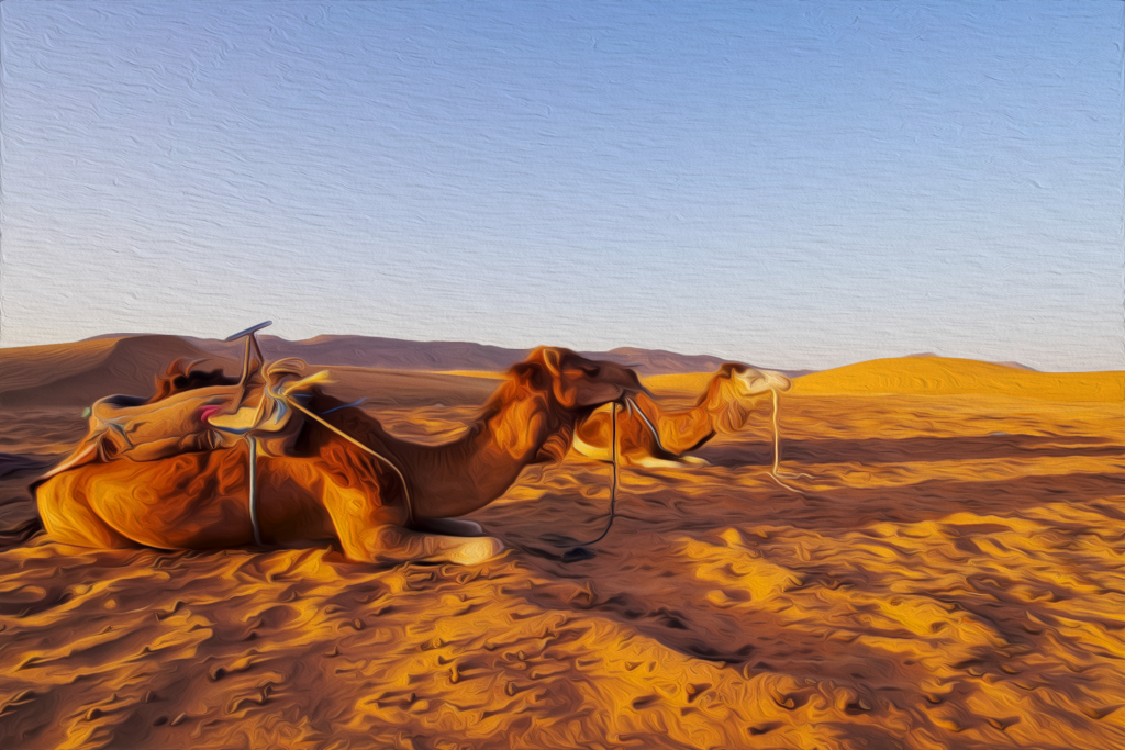 MARRAKECH-DESERT-TOURS